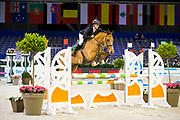 Vincent Dings - Bertje HDH<br /> Jumping Amsterdam 2018<br /> © DigiShots