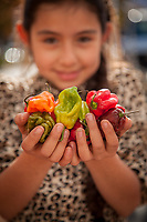 """Lourdes Hernandes supervises her father's vegetable booth at the Calistoga Saturday Market.  """"We have the best peppers, anywhere."""""""