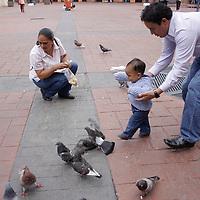 Toluca, México.- Una familia  lleva a su hijo a darle de comer a las palomas de la plaza Fray Andrés de Castro, costumbre que poco a poco va desaparenciendo en los habitantes de la zona. Agencia MVT / Arturo Hernández S.