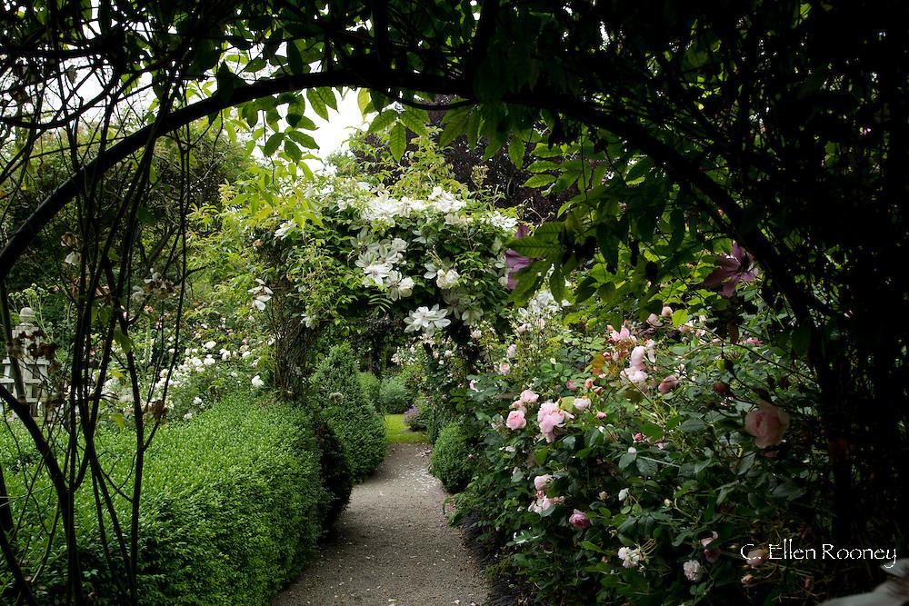 A private Cornish Rose Garden