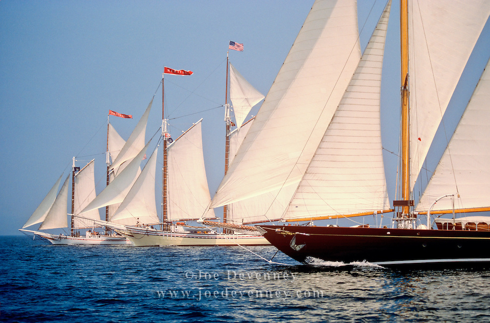 Schooners Racing in Penobscot Bay. Rockland, Maine