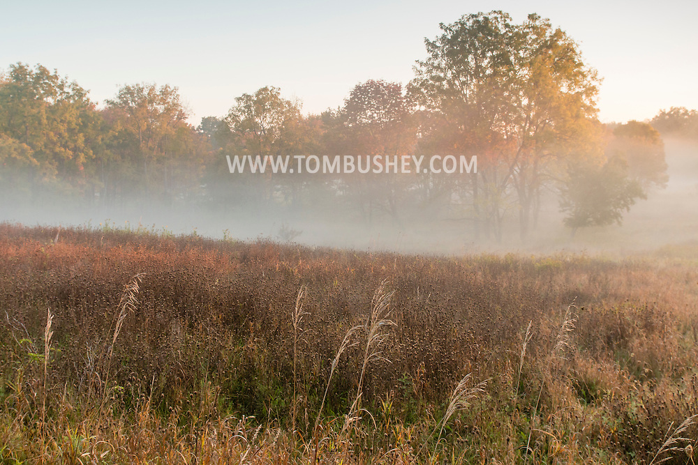 Middletown, New York  - Mornign fog in a field on Oct. 8, 2015.