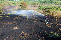 2018_07_23_WOOLWICH_COMMON_FIRE_GFA
