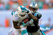 Miami Dolphins wide receiver Mike Wallace (11) catches a pass as he is defended by Carolina Panthers cornerback Captain Munnerlyn (41) during an NFL game at SunLife Stadium on Nov. 24, 2013 in Miami Gardens, Florida. <br /> <br /> &copy;2013 Scott A. Miller