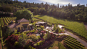 Drone aerial view over DANCIN Vineyards near Jacksonville,  Rogue Valley AVA, Southern Oregon