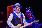 21.07.2013 Elvis Costello @ Tonhalle Düsseldorf