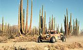 2000 Baja 2000 Buggies