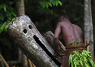 Vanuatu, Malampa Province, Malekula Island, palm tree dance of the small nambas