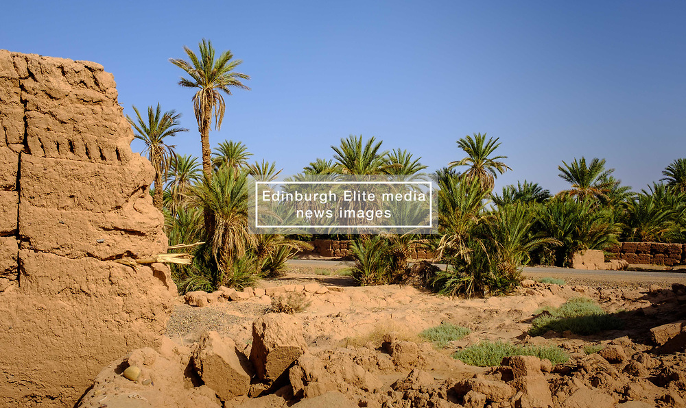 A ruined Kasbah near Mhamid in southern Morocco<br /> <br /> (c) Andrew Wilson | Edinburgh Elite media
