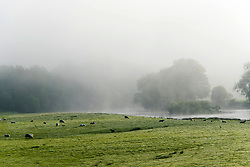© Licensed to London News Pictures. 09/05/2020. Builth Wells, Powys, Wales, UK. Misty morning river Wye at Builth Wells in Powys, Wales, UK this morning. Photo credit: Graham M. Lawrence/LNP