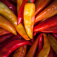 Gleaming Banana Peppers in shades of red, yellow and orange at a farmers market