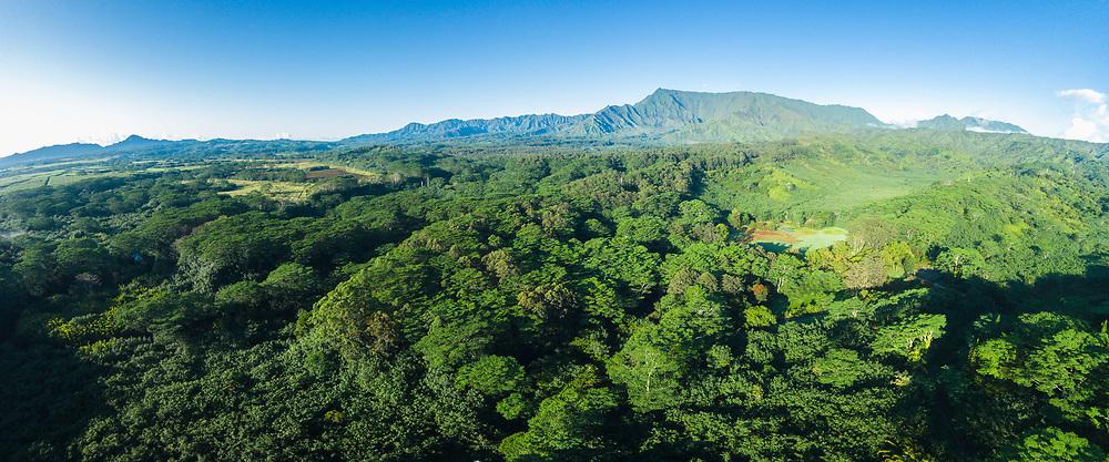 Aerial panorama photograph of Mt Waialeale, Wailua, Kauai, Hawaii