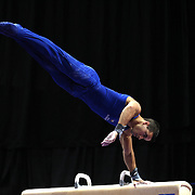 Jake Dalton, Norman, Oklahoma, in action on the Pommel horse during the Senior Men Competition at The 2013 P&G Gymnastics Championships, USA Gymnastics' National Championships at the XL, Centre, Hartford, Connecticut, USA. 16th August 2013. Photo Tim Clayton
