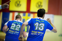 Matej Gaber #22 and David Spiler #13 of Slovenia celebrate goal during during handball match between National teams of Slovenia and Hungary in play off of 2015 Men's World Championship Qualifications on June 15, 2014 in Rdeca dvorana, Velenje, Slovenia. Photo by Urban Urbanc / Sportida