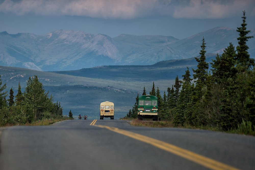 July 25, 2015: A pair of racers are passed by buses on the Denali Park Road during stage five of the 2015 Alaska Challenge handcycle race.