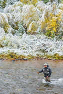 Paul Bourq from North Carolina, a current member of Team USA, fishes on the Frying Pan River during the first segment of the 2013 U.S. National Fly Fishing Championship in Basalt, Colorado.
