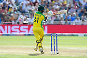 David Warner of Australia swings at a short ball during the ICC Cricket World Cup 2019 match between Afghanistan and Australia at the Bristol County Ground, Bristol, United Kingdom on 1 June 2019.