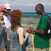 A ranger shows a sea star to visitors on a tide pool walk, Chumbe Island Coral Park, Tanzania, Africa