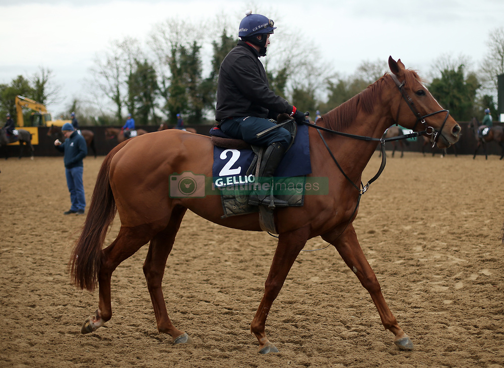 Shane McCann on Samcro during the stable visit to Gordon Elliott's yard at Cullentra House, County Meath.