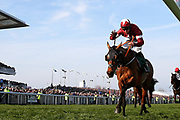 Winner of the 2019 Grand National Tiger Roll and jockey Davey Russell come over the finish line in the 5:15pm The Randox Health Grand National Steeple Chase (Grade 3) 4m 2f during the Grand National Meeting at Aintree, Liverpool, United Kingdom on 6 April 2019.
