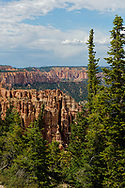 Black Birch Canyon,elevation 8750, Bryce Canyon National Park