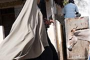 A women in a Burqa walks on the main street, past a donkey and a man seated in Lamu, Lamu Island, Kenya.