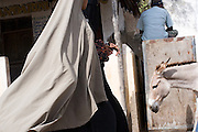 A women in a Burqa walks on the main street, past a donkey and a man seated in Lamu, Lamu Island, Kenya.