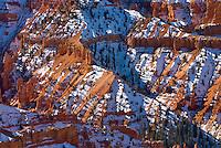 Fresh snow on Cedar Breaks National Monument Utah USA