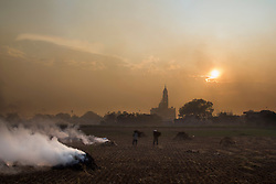 """Farmer burns straws to prepare for a new cycle of crop. """"burning field season"""", Nam Dinh province, Vietnam, Asia. Church in background"""