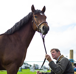 © Licensed to London News Pictures. <br /> 13/08/2014. <br /> <br /> Danby, North Yorkshire, United Kingdom<br /> <br /> A man sits quietly with his horse during the Danby Agricultural Show in North Yorkshire. <br /> <br /> This year is the 154th show which was founded in 1848. It is the oldest agricultural show in the area and offers sheep dog trials, judging of a variety of different animals such as cattle, sheep, ferrets, horses and rabbits along with different classes of horticulture and dairy. <br /> <br /> Photo credit : Ian Forsyth/LNP