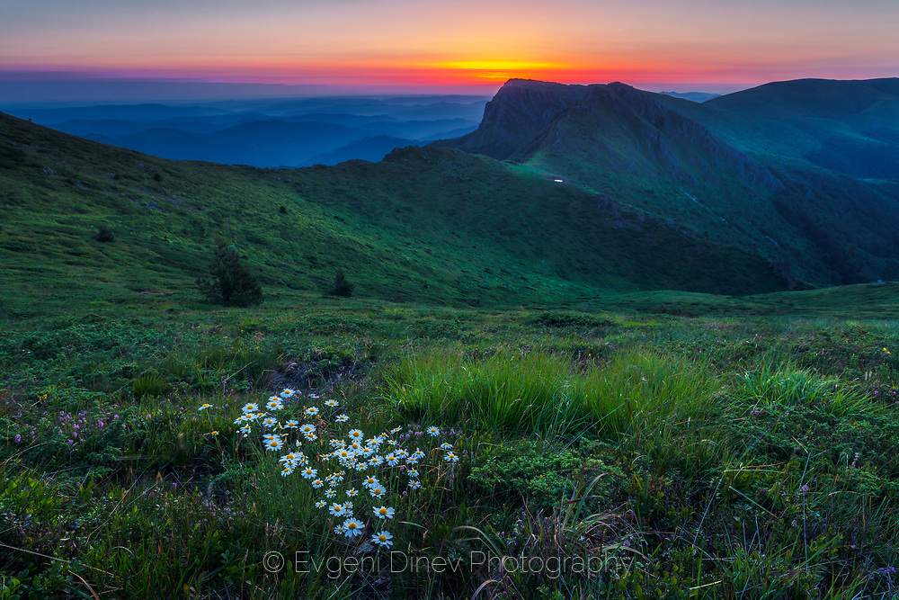 Summer time on the ridge of Kozya Stena (Goat's Wall) reserve, Central Balkan Natual Park, Balkan Mountains