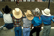 Kids wearing their cowboy hats watch the mini-rodeo, part of rodeo activities during the Santa Maria, Calif. Elks Rodeo.