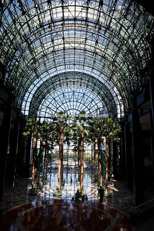 New York. world financial center.  palm trees in the atrium of the winter garden / palmiers dans le jardin d'hiver du world financial center ,New York - Etats Unis