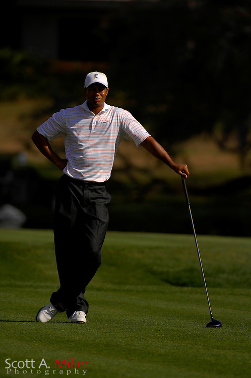 Tiger Woods in action during the Arnold Palmer Invitational at Bay Hill Club and Lodge on March 15, 2007 in Orlando, Florida...© 2007 Scott A. Miller