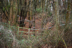 "© Licensed to London News Pictures. 10/12/2019. Gerrards Cross, UK. Police tape marks the area of a large cordon as the Metropolitan Police Service continues a search of woodland in Gerrards Cross, Buckinghamshire. Police have been in the area conducting operations on Hedgerley Lane since Thursday 5th December 2019. In a press statement issued on 7th December a Metropolitan Police spokesperson said ""Officers are currently in the Gerrards Cross area of Buckinghamshire as part of an ongoing investigation.<br /> ""We are not prepared to discuss further for operational reasons."" No further updates have been issued as of 10th December. Photo credit: Peter Manning/LNP"