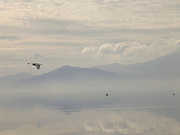tranquil view of Salton Sea with mountains in the background USA