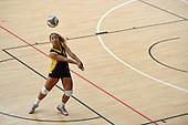 20130301 Wellington Secondary Schools  Volleyball Senior Tournament