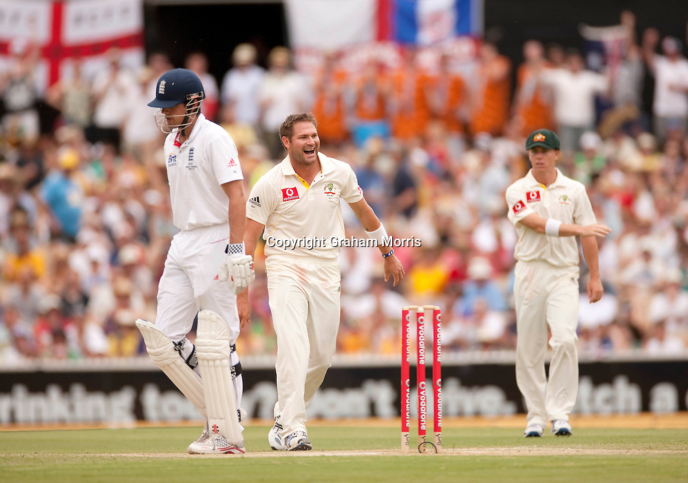 Bowler Ryan Harris celebrates removing Alastair Cook (left) during the second Ashes Test Match between Australia and England at the Adelaide Oval. Photo: Graham Morris (Tel: +44(0)20 8969 4192 Email: sales@cricketpix.com) 5/12/10