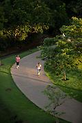Cuiaba_MT, Brasil.<br /> <br /> Parque Mae Bonifacia em Cuiaba, Mato Grosso.<br /> <br /> Mae Bonifacia Park in Cuiaba, Mato Grosso.<br /> <br /> Foto: LEO DRUMMOND / NITRO