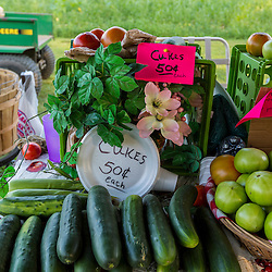 Vegetables at a farm stand in Epping, New Hampshire.