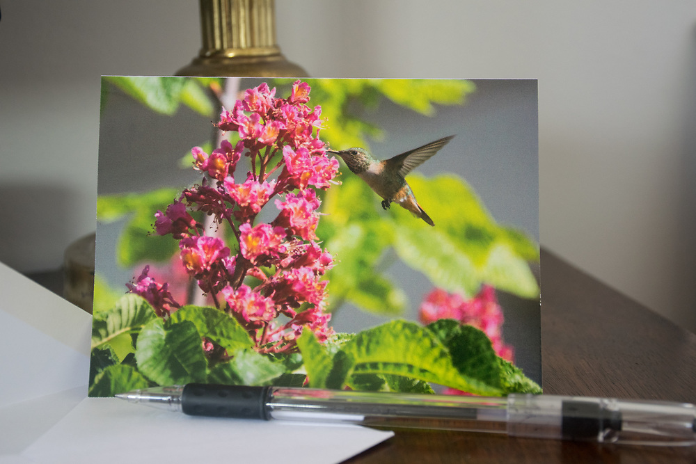 4x5.5 in Greeting Card with 'Work' Photo, a hummingbird and pink flowers. Card has a gloss finish.