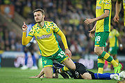 Norwich City midfielder Tom Trybull (19)  making a point after being fouled during the EFL Sky Bet Championship match between Norwich City and Sheffield Wednesday at Carrow Road, Norwich, England on 19 April 2019.