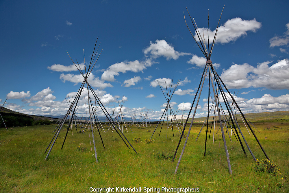 MT00075-00...MONTANA - Ghost teepees, poles standing to mark the location of where people were sleeping the night of the slaughter at the Big Hole National Battlefield.