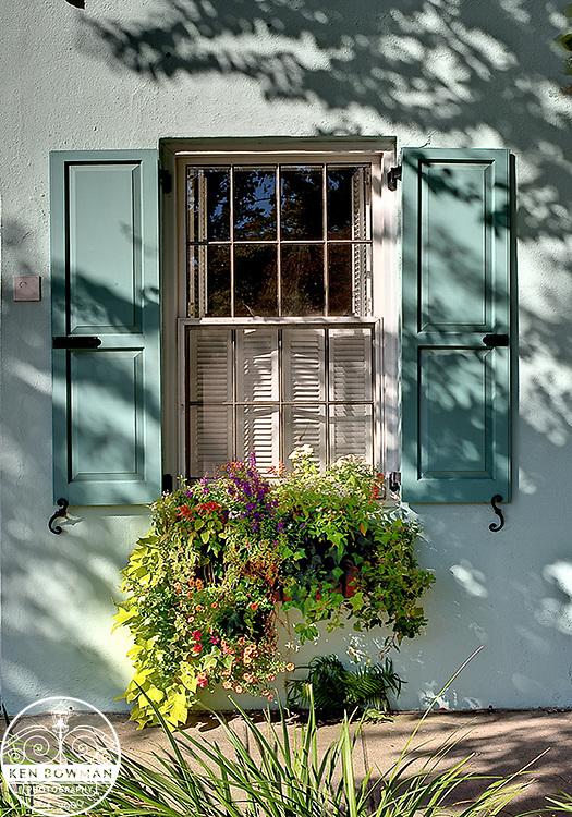 Charleston East Bay Street #81 teal window box.