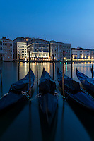 Gondolas at Dawn, Venice, Italy