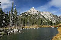Mount Lorette along the Kananaskis River, Kananaskis Country Alberta