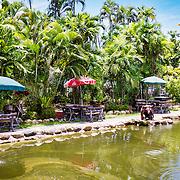 THA/Bangkok/20160729 - Vakantie Thailand 2016 Bangkok, vijver bij restaurant