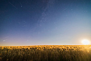 A composite of the Perseid meteor shower on the night of August 11/12, 2017, taken from home in rural Alberta, over a wheatfield with the waning Moon rising at right. The radiant point in Perseus is just left of centre. M31 is right of centre; Cassiopeia is above centre. <br /> <br /> As usual, there is one imposter satellite above the radiant looking like a meteor moving in the right direction, but with a uniform trail that gives it away as a satellite. <br /> <br /> The Moon was a waning gibbous this night.<br /> <br /> This is a composite of 19 images: one for the foreground and sky and one meteor, and 18 for other meteors layered in using Lighten mode and masked to reveal just the meteors. The camera was not tracking the sky, so the meteor layers were all rotated around Polaris at upper left to place the meteor for that frame in the correct position in the sky relative to the background stars where it appeared, to preserve the perspective of the radiant point in Perseus, which rose through the night.<br /> <br /> The images were taken from a full set of 700 images taken over 4.5 hours from 10:42 pm to 3:04 am. The base image is from 11:46 pm just after moonrise. <br /> <br /> Each exposure was 20 seconds at f/2.5 with the Rokinon 14mm lens and Canon 6D MkII at ISO 3200. I used the camera&rsquo;s internal Interval Timer set to 22 second interval for shots as quickly as possible with a mimumum of &ldquo;dark time.&rdquo;
