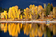 USA, Idaho, Valley County, McCall, Payette Lake Shore, Fall Sunset reflected on the trees lining the shore