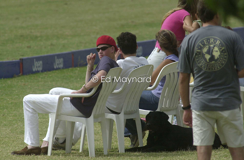 Prince Harry watching a polo match, Sotogrande, Spain.<br />